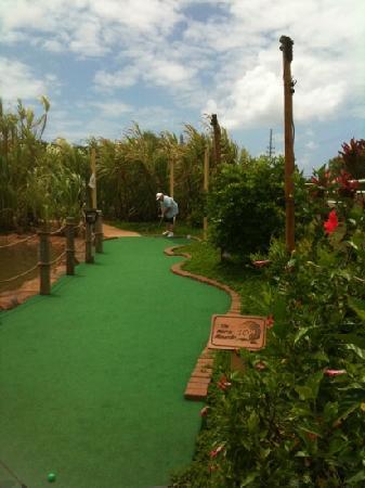 ‪Kauai Mini Golf‬