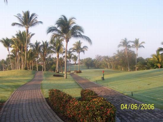 Club de Golf Los Flamingos: Cart paths