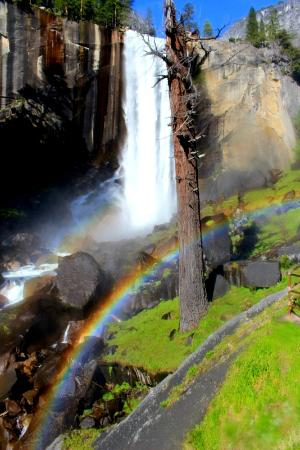 Half Dome Village: View of vernal falls ( a short walk away from curry)