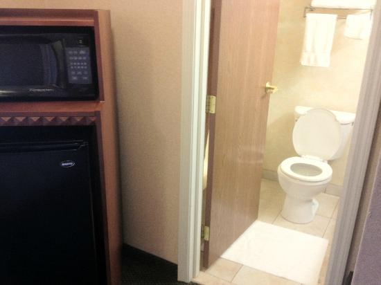Clarion Inn: Bathroom and Microwave/Fridge