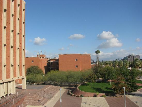 University of Arizona : landscape