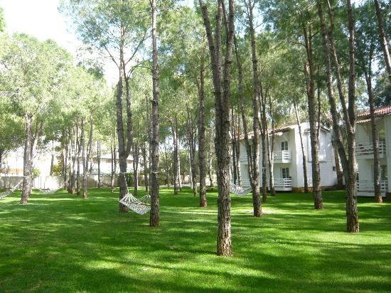 Belek, Türkei: Relaxing place between the bungalows