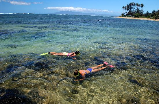 Kaunakakai, Гавайи: Snorkeling at eastend beach