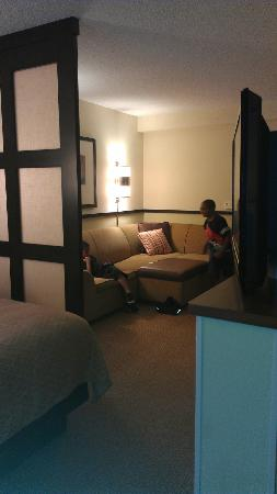 Hyatt Place Jacksonville Airport: Family Room area.  This is a pull out sofa and can sleep 2.