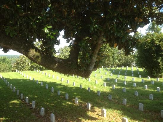 Vicksburg National Cemetery: View of some of the graves
