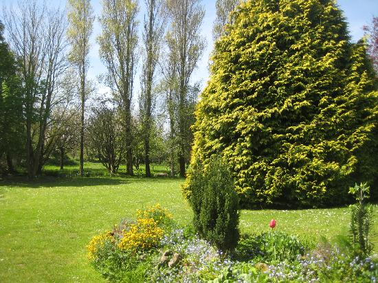 La Comte : garden