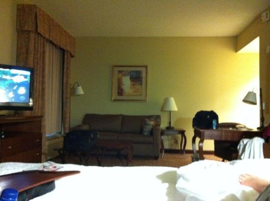 Hampton Inn & Suites Lakeland-South Polk Parkway: king room