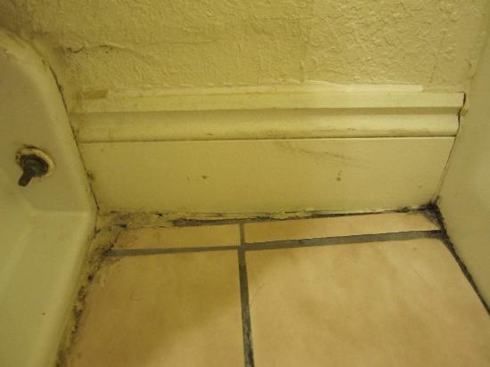 Beachside Resort Hotel: Dirty floor in bath