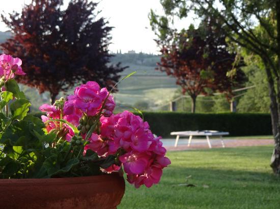 Agriturismo Casalpiano: vParque