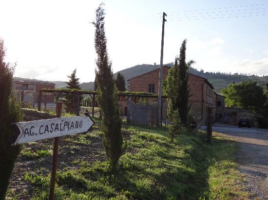 Agriturismo Casalpiano: El agriturismo.