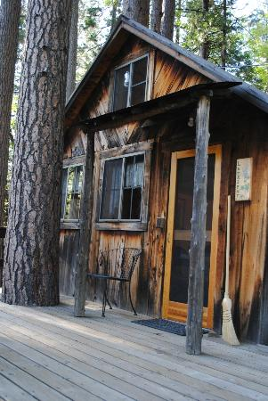Sunset Inn Yosemite Vacation Cabins: Larkspur cabin