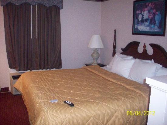 Comfort Inn West: Bed