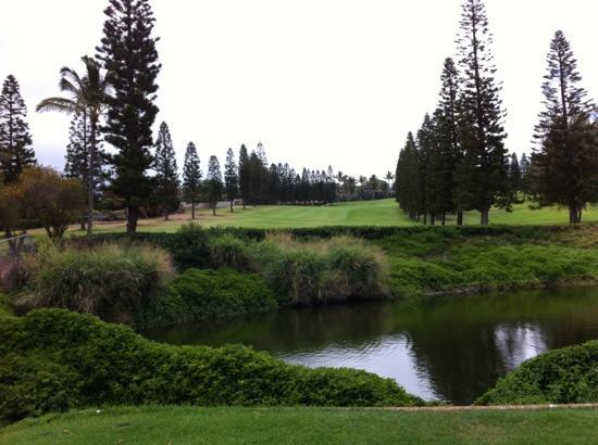 Pukalani Country Club: #18 Beautiful view from tee box