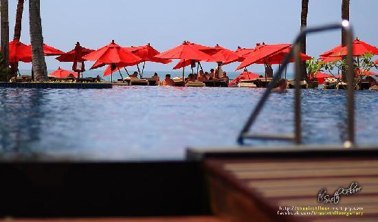 Ramada Khao Lak Resort : Pool