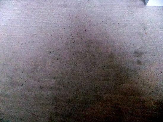 Elite Plaza Hotel Malmo: Dirty, stained and marked carpet in the room