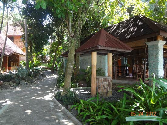 Alona Tropical Beach Resort: pathway
