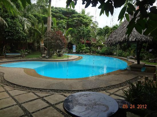 Alona Tropical Beach Resort: cute pool
