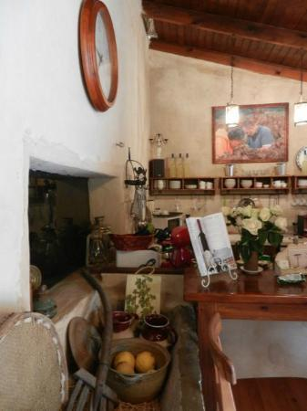 Smadar-Inn: tasting counter for winery