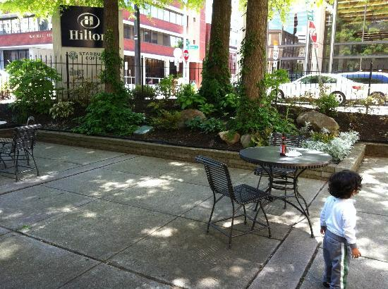 Hilton Knoxville: The outdoor courtyard/patio where I drank my chai latte while my toddler explored