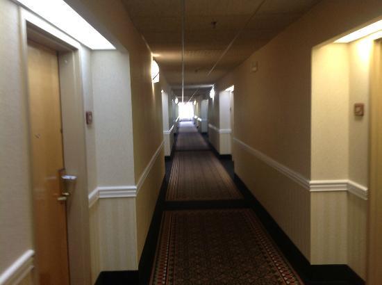 Holiday Inn Express Berea: Hallway