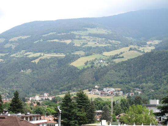 Garni Cremona