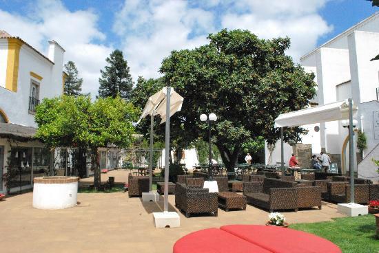 Jardim do Paco : Área externa