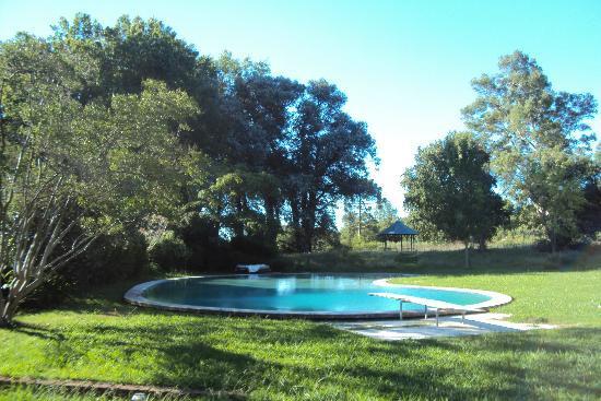 El Retiro Polo Club : The pool at the house