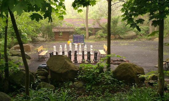Gettysburg / Battlefield KOA: Life size chess & little play cabin