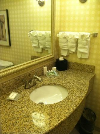 Hilton Garden Inn Bowling Green: bathroom counter