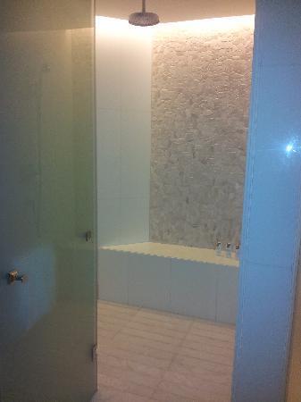 The St. Regis Saadiyat Island Resort: Walk in Shower