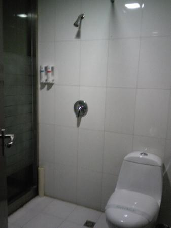 Kashi New Delhi Hotel: 12.04.30【ニューデリーホテル】シャワールームとトイレ