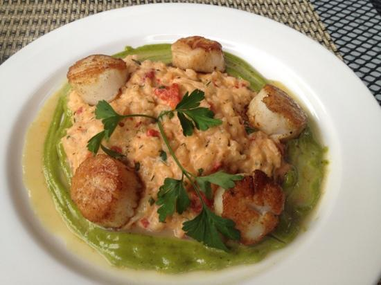 The Esmeralda Restaurant: Sea Scallops w/ a red pepper goat cheese risotto