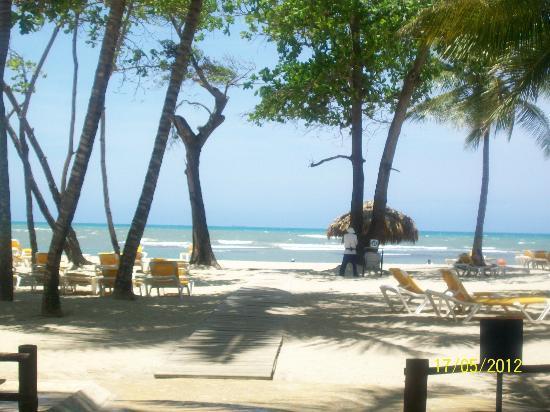 Iberostar Costa Dorada: View of beach