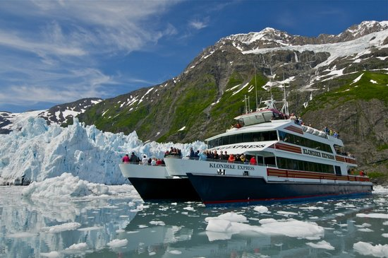 26 Glacier Cruise by Phillips Cruises and Tours: Surprise Glacier. Photo: Bill R.