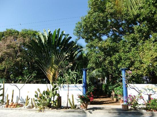 Villa Mozart y Macondo: Villa Mozart Zugang Garten