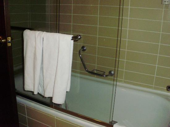 Latanya Palm Hotel: Modern bathroom