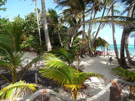 Little Corn Beach and Bungalow : Little Corn Island, Corn Islands Nicaragua