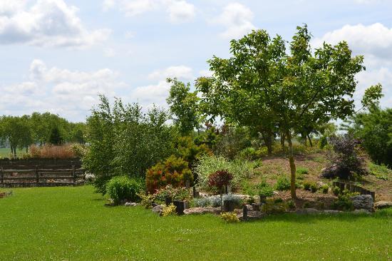 La Ferme des 3 Maillets : View of Gardens