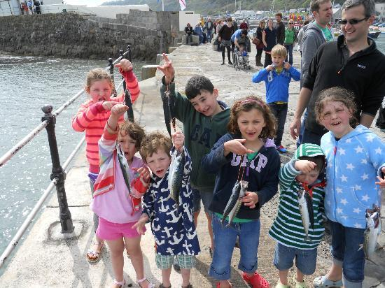 Photos of Harry May Boat Trips, Lyme Regis