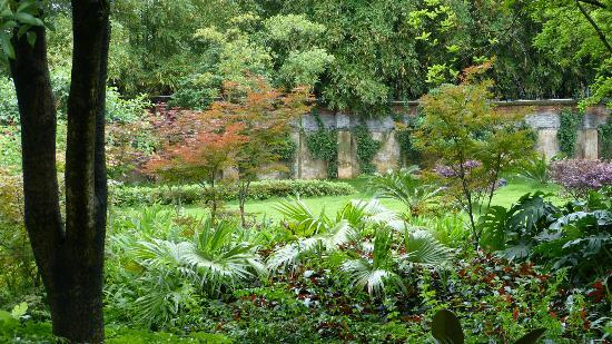 Guilinyi Royal Palace: un petit bout du jardin de l'hôtel