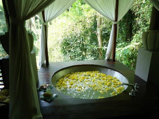 Maya Ubud Resort & Spa: Spa