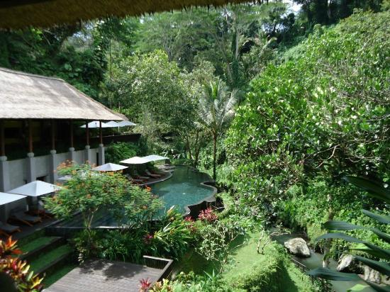 Maya Ubud Resort & Spa: Lower Level Pool