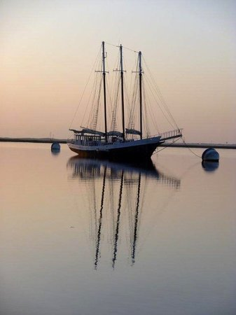 Schooners Steelaway-Day Boat Tours
