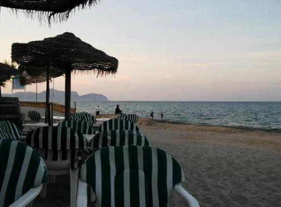 Bananas: Relax and enjoy the sunset