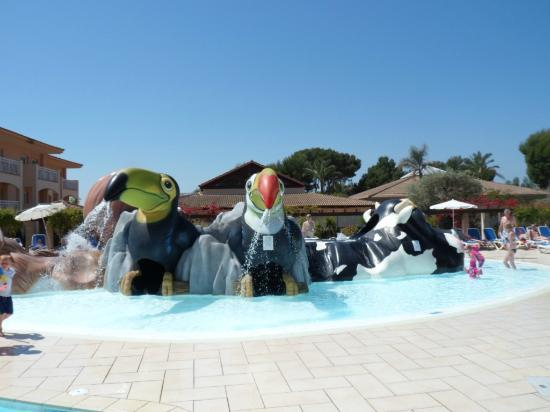 Aparthotel Playa Mar & Spa: Toucan/Cow slides