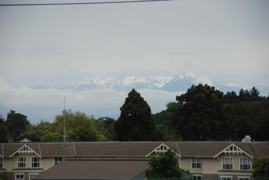 Abigail's Hotel: View of mountains from window