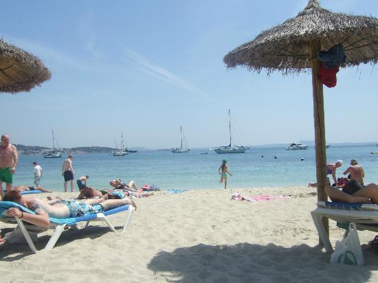 AluaSun Torrenova: gorgeous beach
