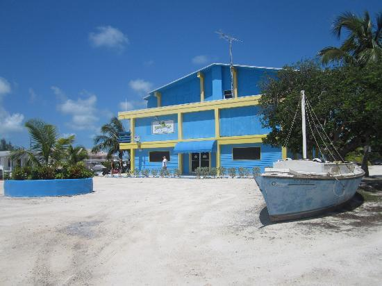Photo of Thirsty Turtle Yacht Club Bimini