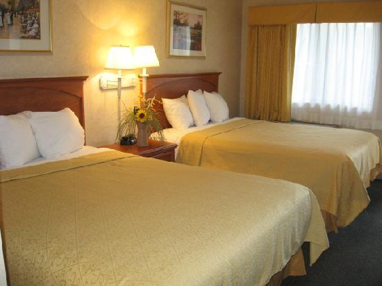 Quality Inn Ontario Airport Convention Center: Guest Room