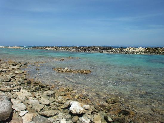 Baby Beach : near the snorkelling area